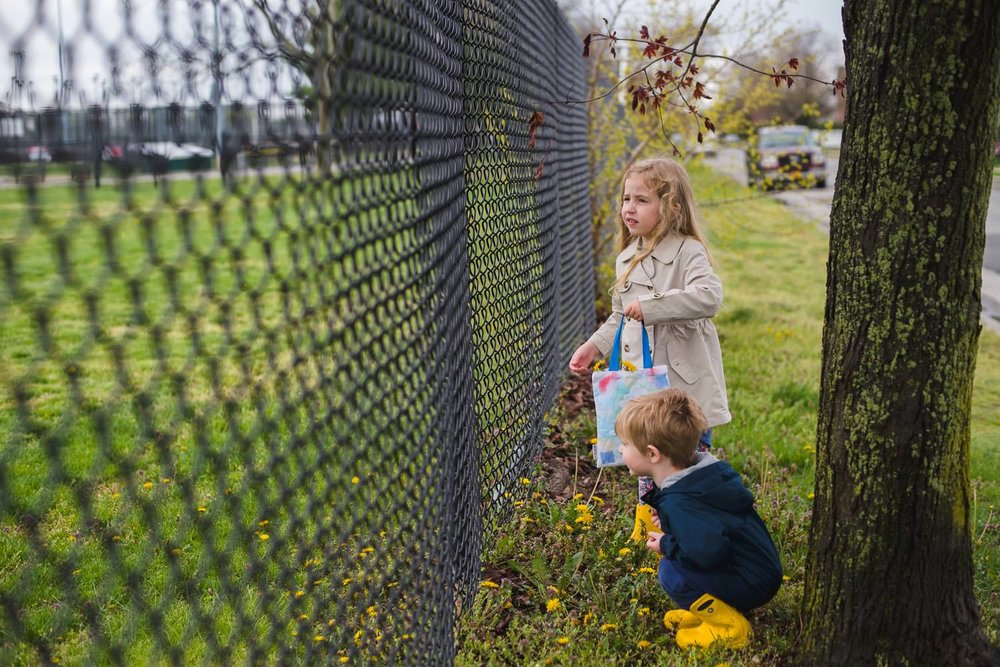 Brother and sister picking flowers by chain link fence.