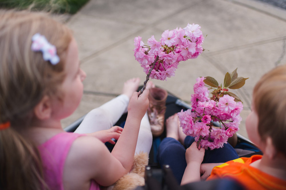 Kids holding blossoms as they ride in their stroller.