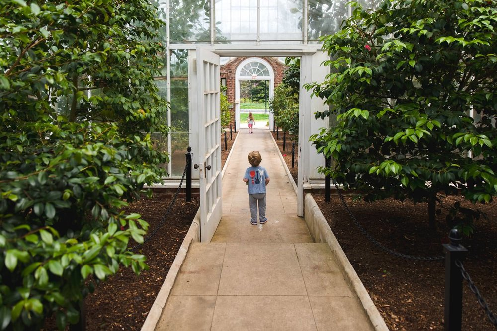 Kids explore the greenhouse at Planting Fields Arboretum.