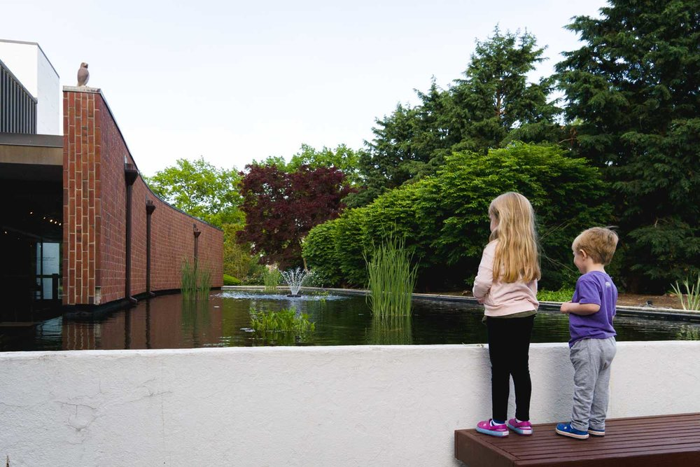 Kids look in the koi pond at Adelphi University.