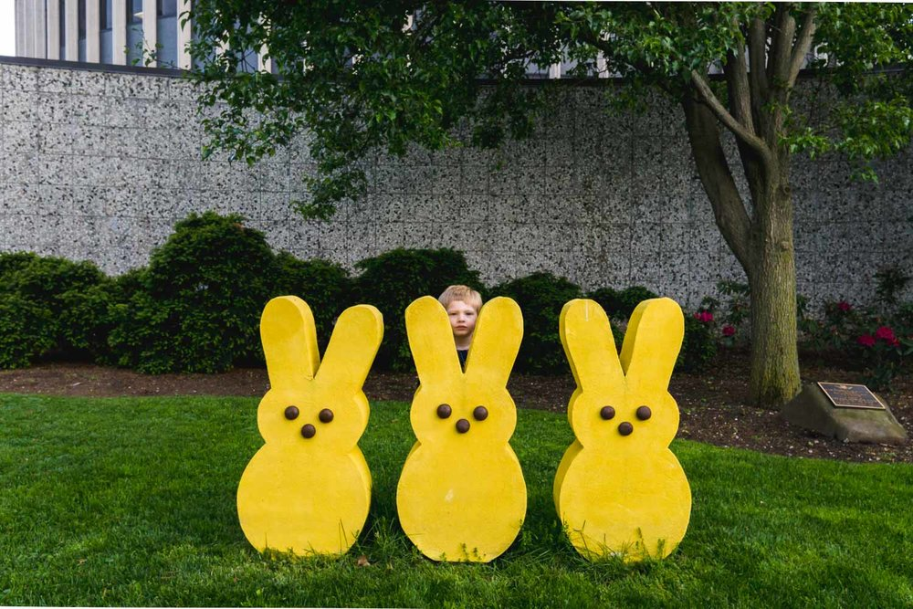 A boy poses with some giant Peeps at Adelphi University
