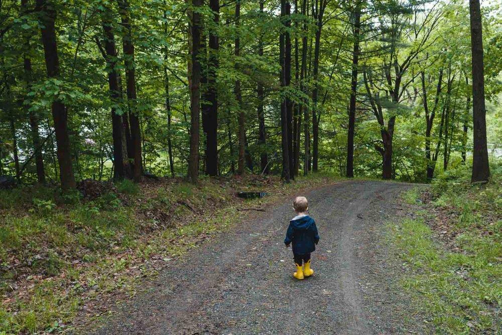 A little boy walks down a wooded path.