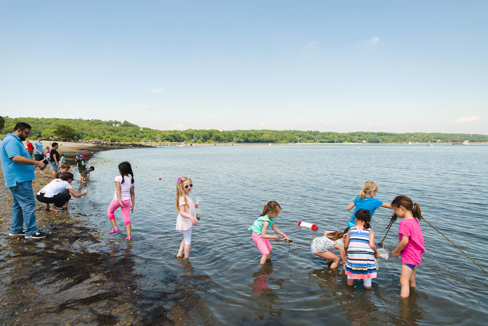 Children wade into the water in Oyster Bay, NY.