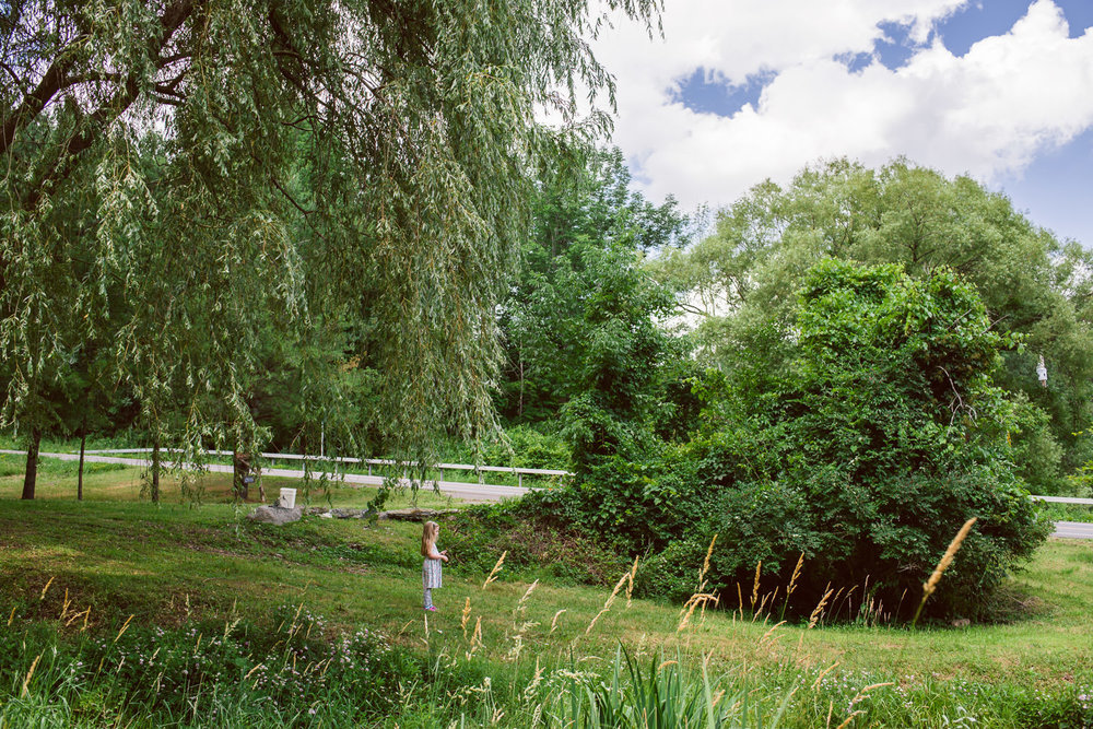 A little girl stands under a big willow tree.