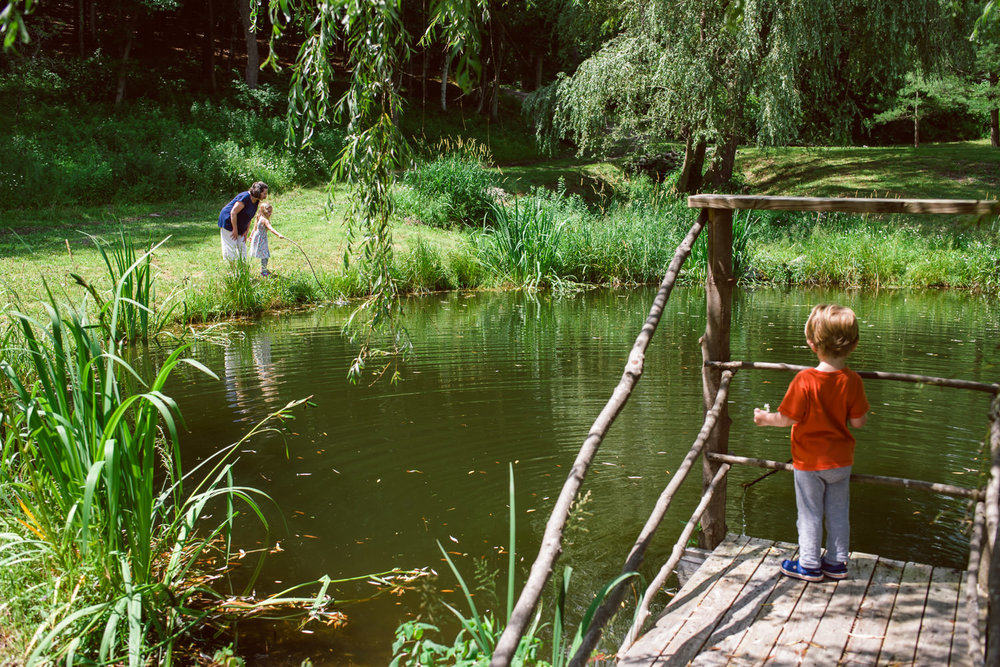Family members stand around a pond in Copake, NY, looking for fish.