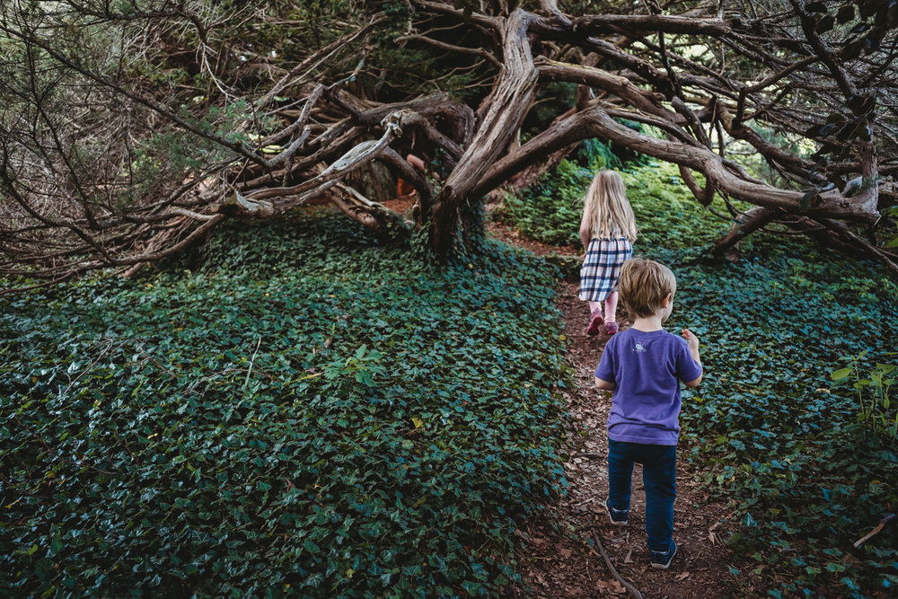 Children explore a wooded path at the Berkshire Botanical Gardens.