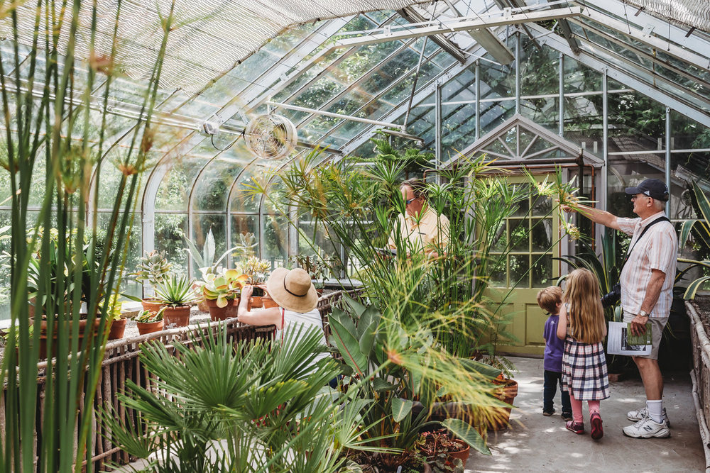People Explore A Greenhouse At The Berkshire Botanical Gardens.