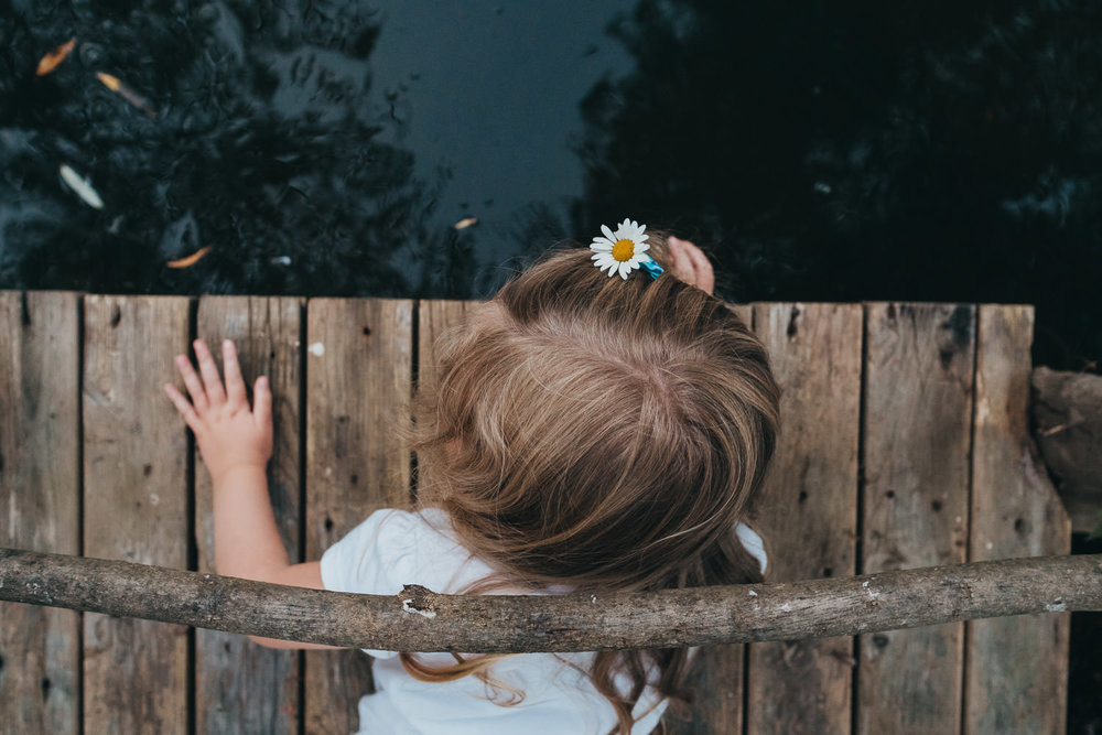 A little girl leans over a pier and looks into a pond.
