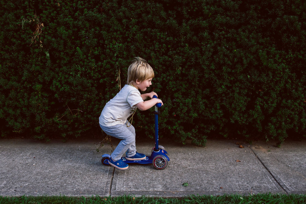 A little boy rides his scooter past a hedge.