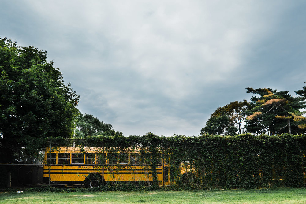A school bus covered with ivy.