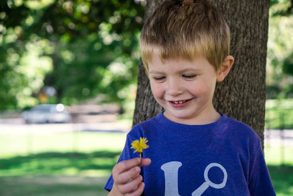 A smiling little boy holds a dandelion.