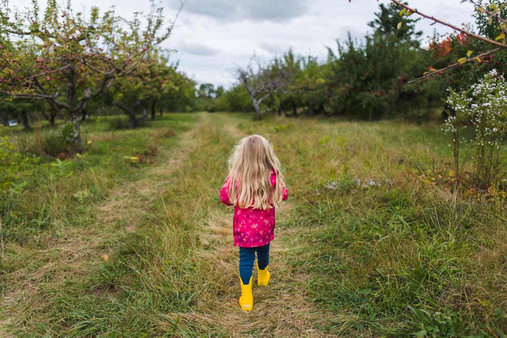 A little girl with long blonde hair follows a path through an orchard.