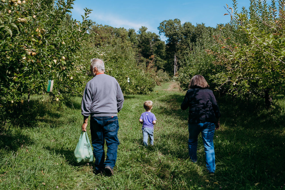 A little boy and his grandparents walk through an apple orchard.