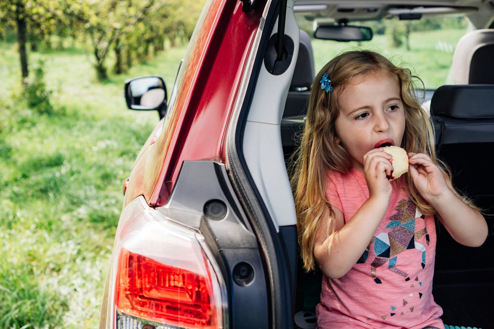 A little girl eats an apple in the back of a station wagon.