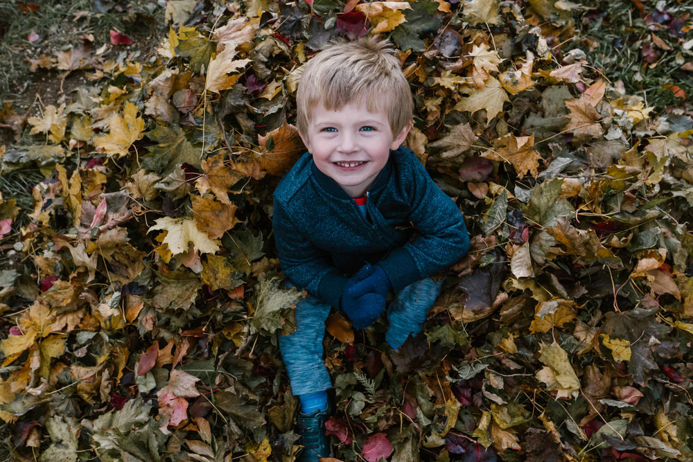 A little boy sits in a pile of leaves.