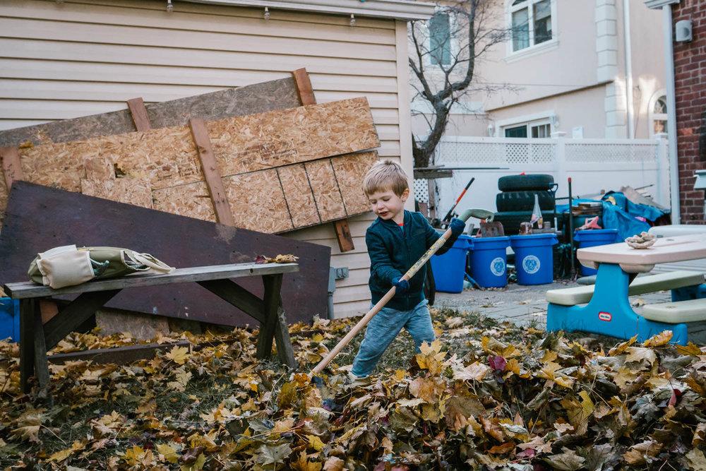 A little boy rakes leaves.