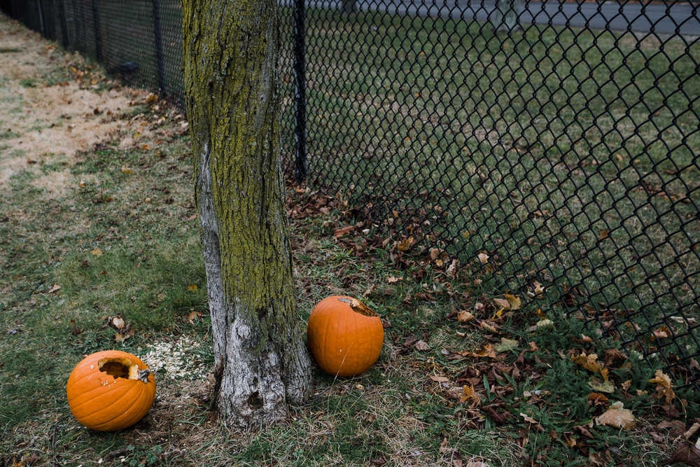 Rotting pumpkins lie on the grass.