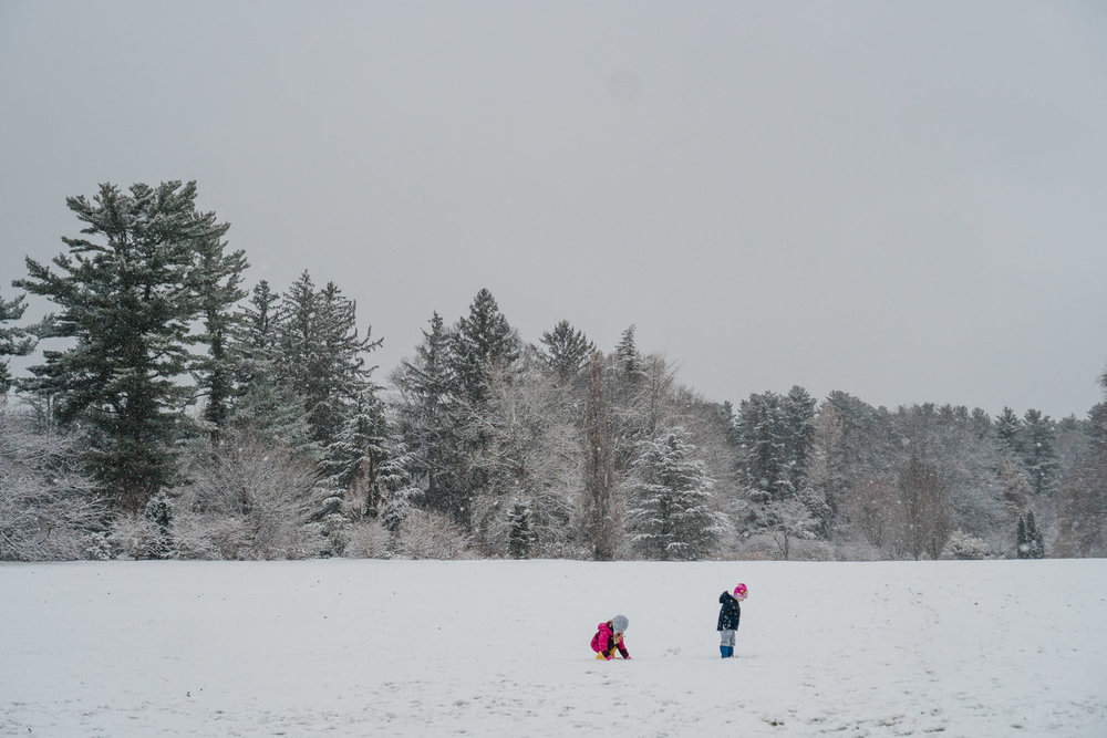 Kids run through the snow at Planting Fields Arboretum.