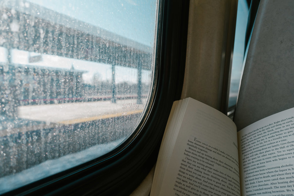 Reading a book on the train.
