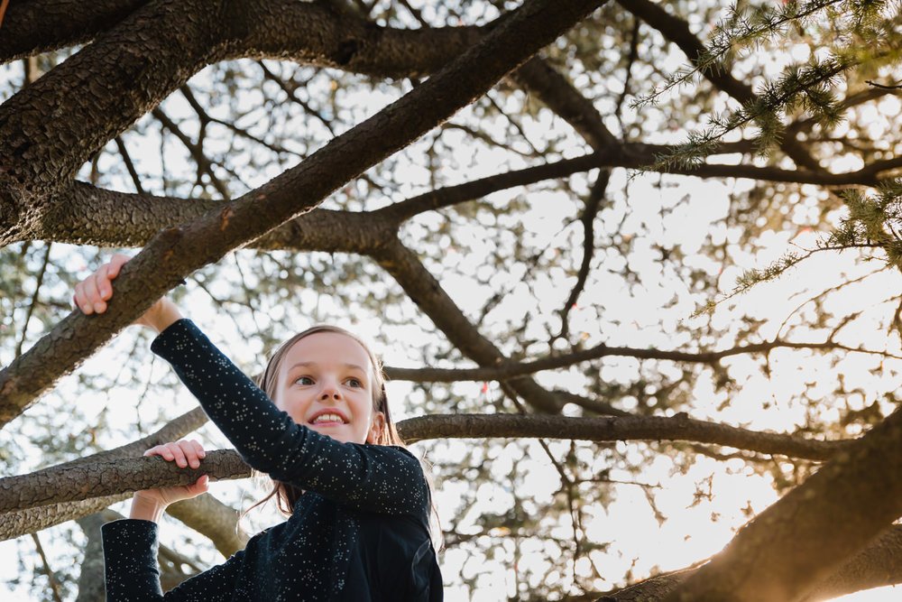 A little girl climbs a tree.