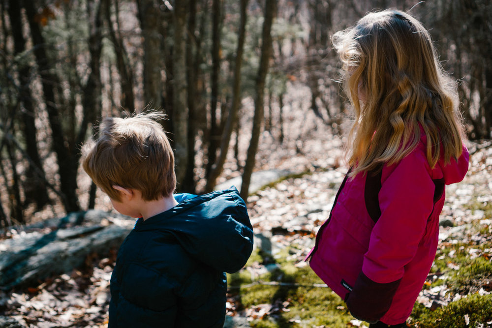 A boy and girl look out into the woods.