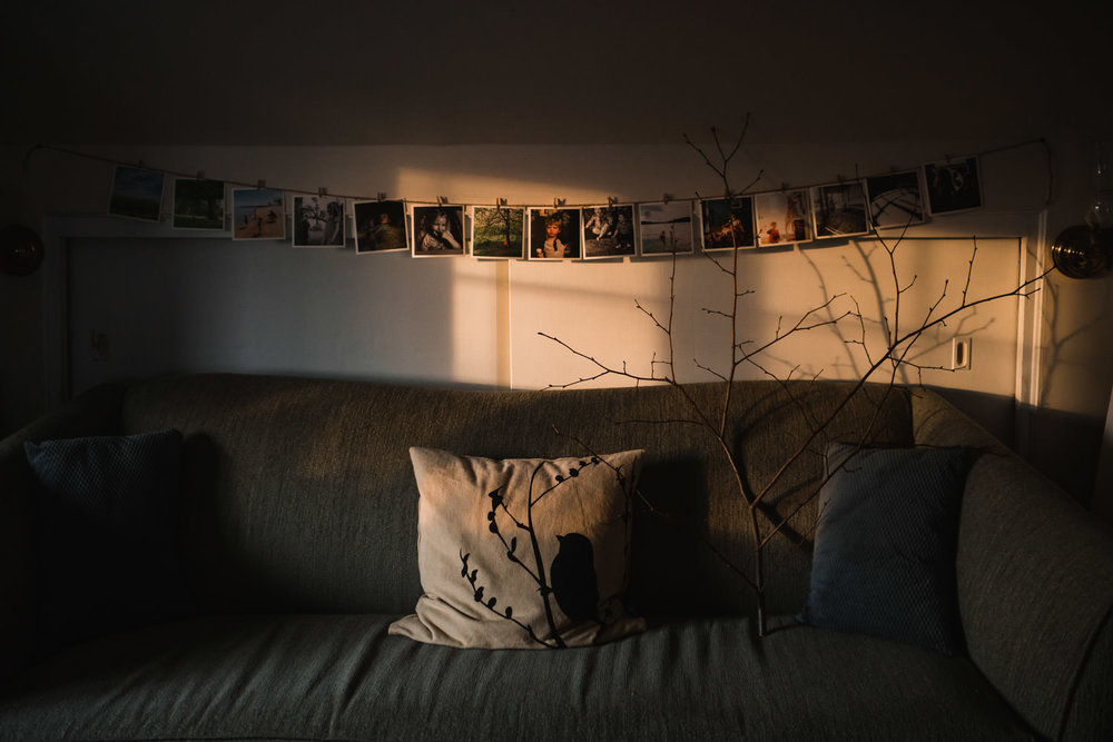 Afternoon light shines on a couch.