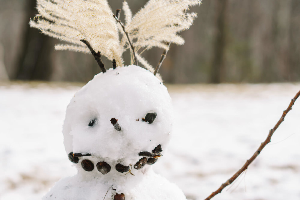 A snowman with funny hair.