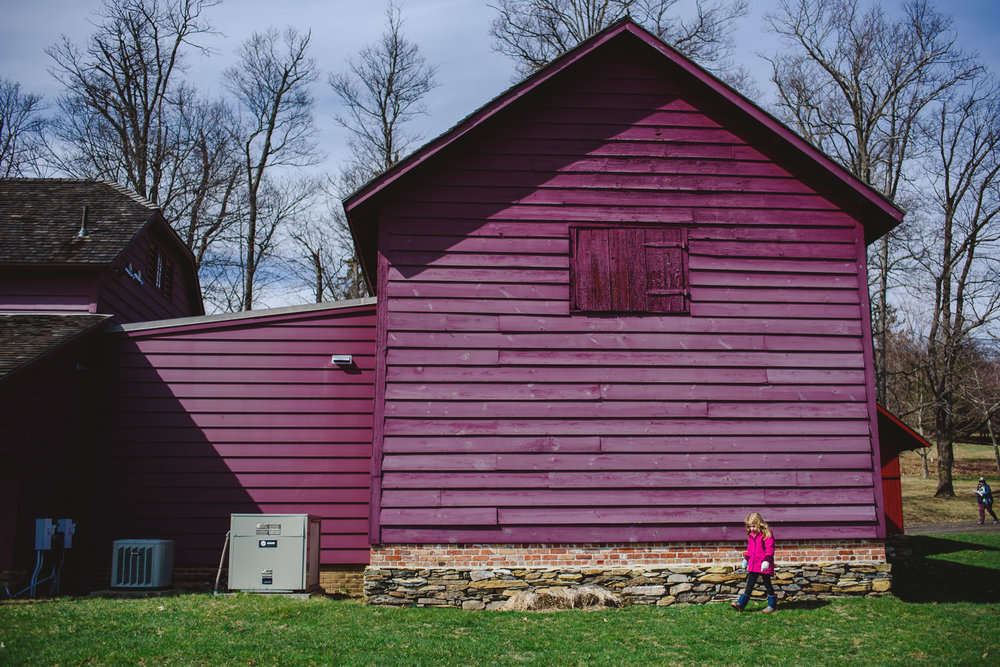 A little girl runs past a red barn.