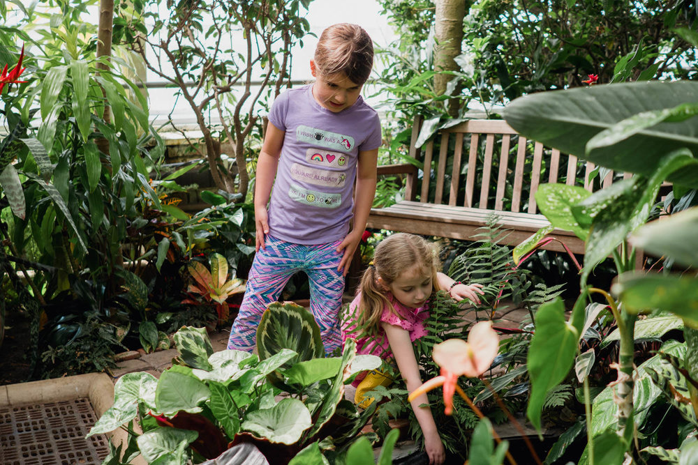 Two little girls look at the plants in a greenhouse.