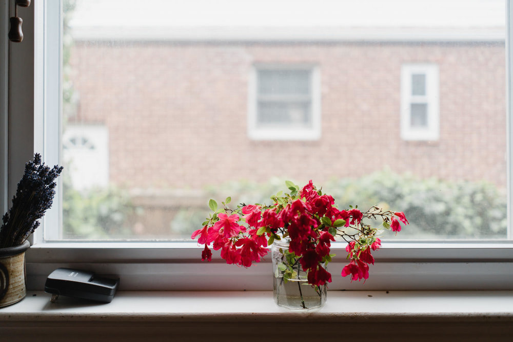 Flowers on a window ledge.