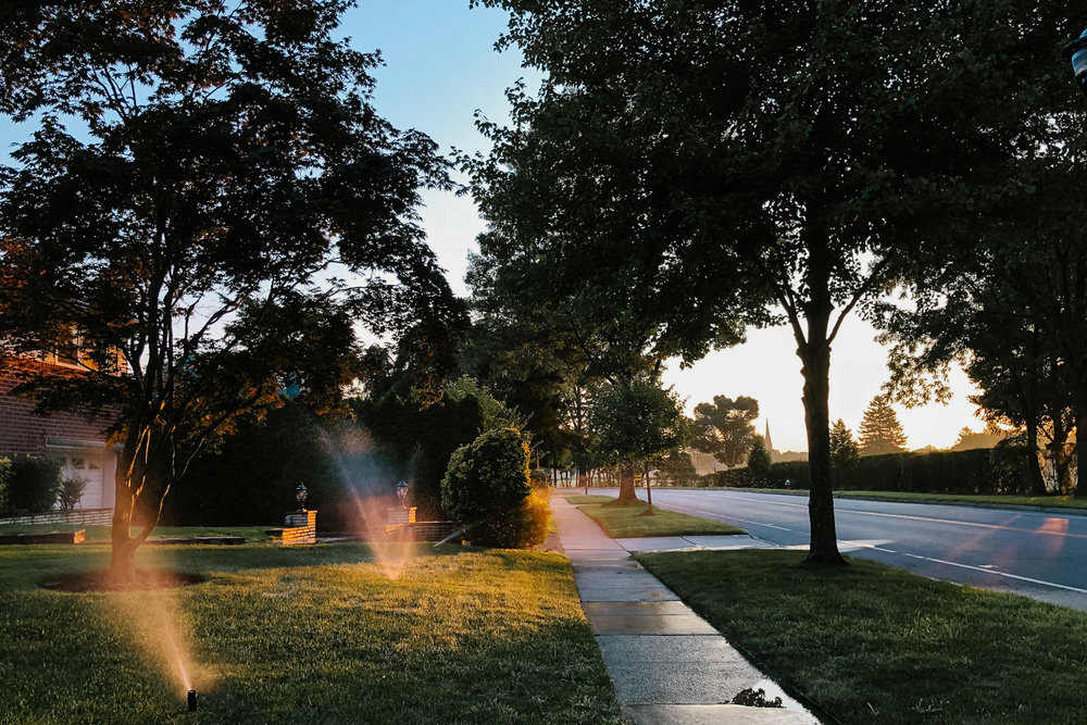 Sprinklers going off at sunrise.