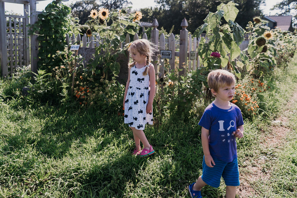 Kids explore the grounds at Crossroads Farm.