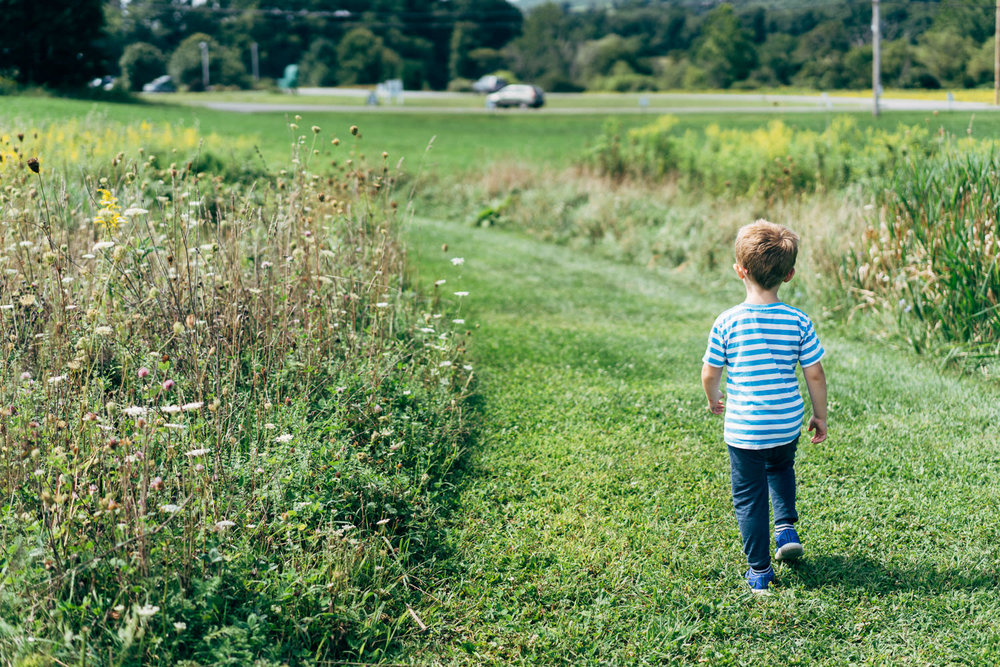 A little boy walks down a grassy trail.