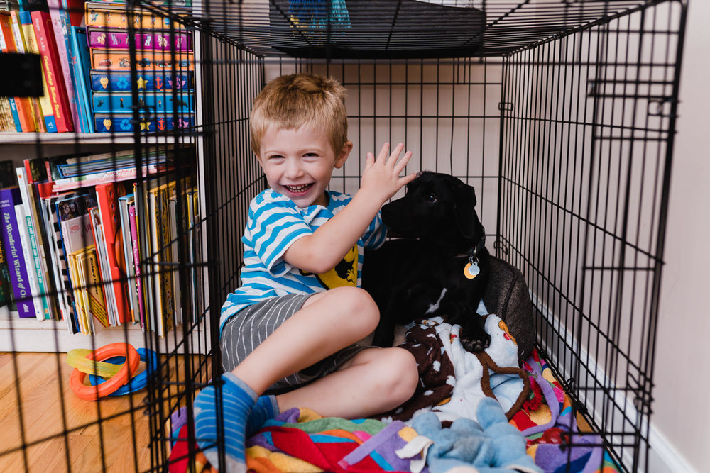 A little boy crawls inside his dog's crate with his dog.