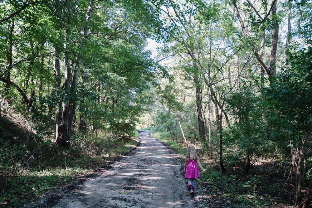 A little girl walks through the woods.