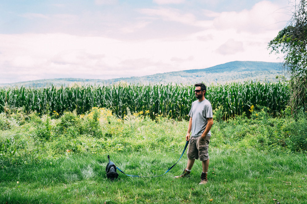 A man walks his dog in the countryside.