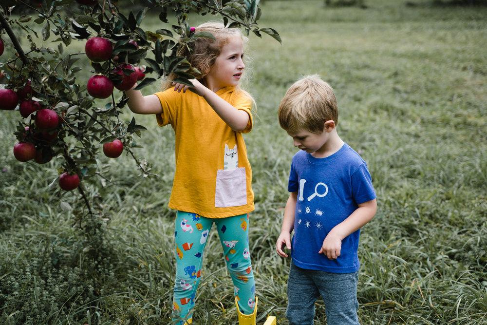 Two children pick apples.