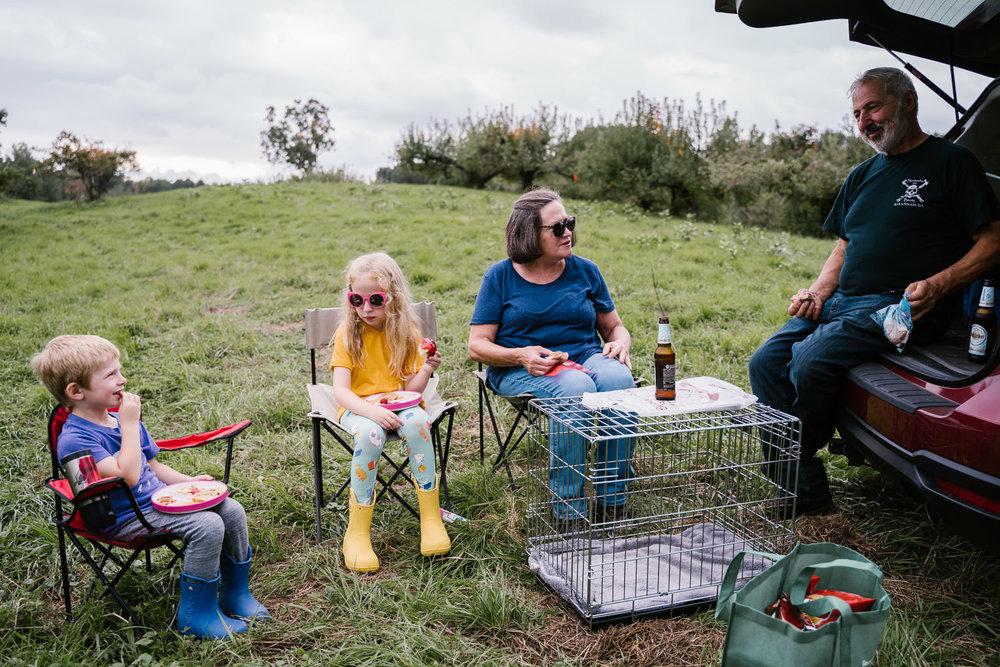 A family picnics at an apple orchard.