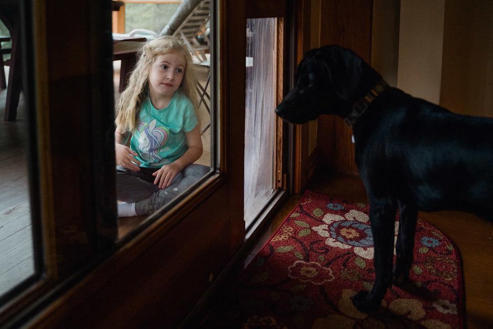 A little girl coaxes a dog through a doggie door.