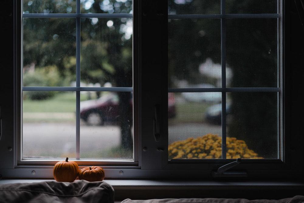 Little pumpkins on a window ledge.