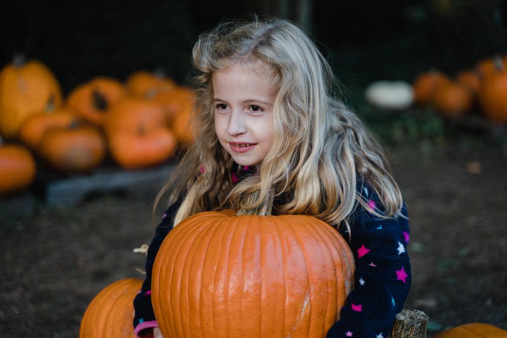 A little girl tries to pick up a big pumpkin.