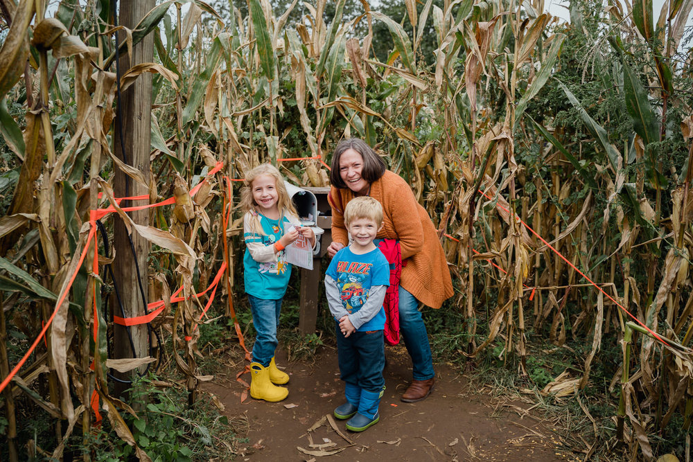 A family completes the corn maze at the Queens County Farm.