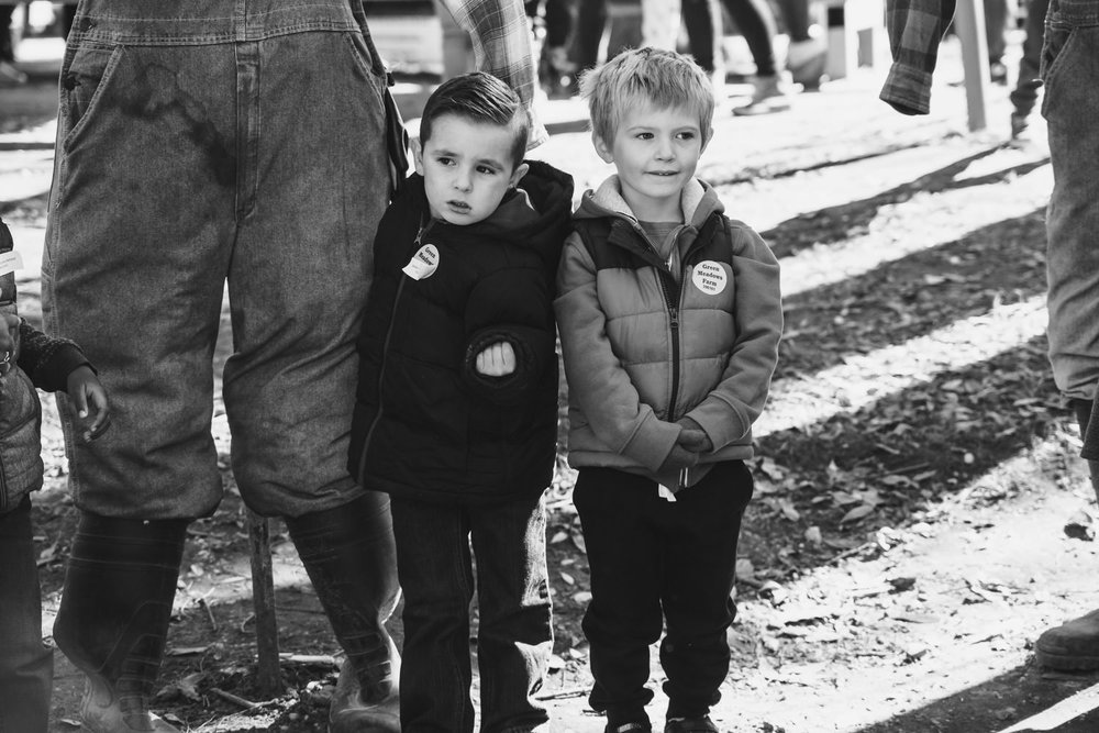 Two little boys at Green Meadows Farm.