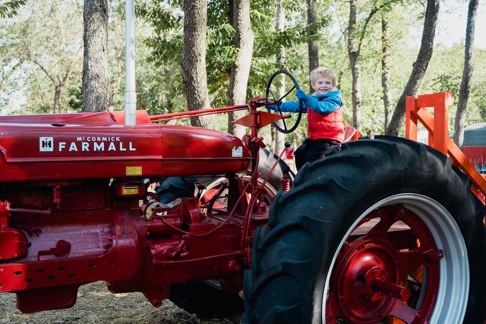 A little boy rides a tractor.