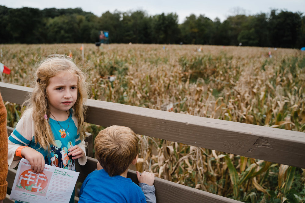Two kids look over the corn maze at the Queens County Farm.