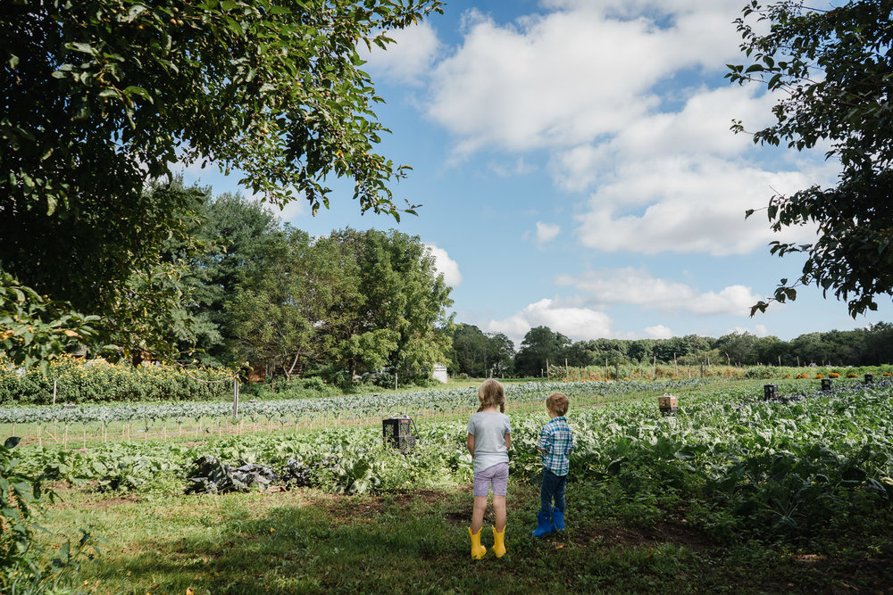 Two children look at the fields at Restoration Farm.