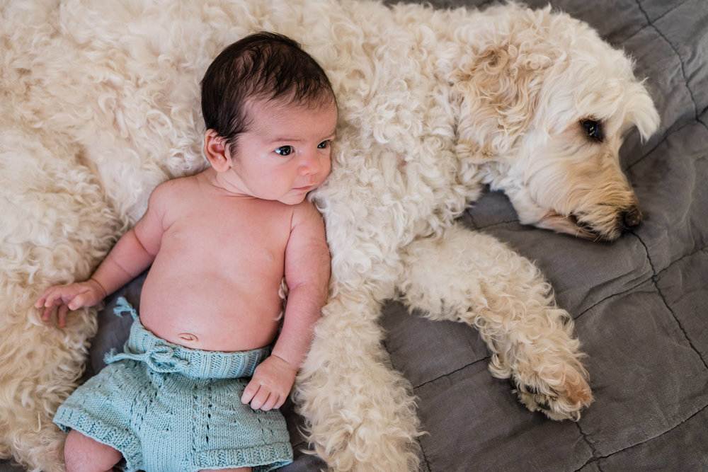 A baby boy rests on his dog.