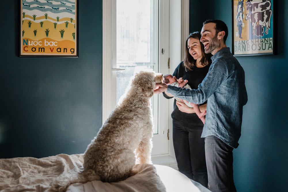 New parents pet their dog.