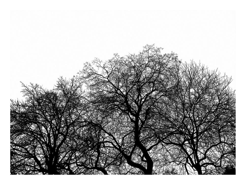 Simon-Portbury-Minus7_No_2.jpg