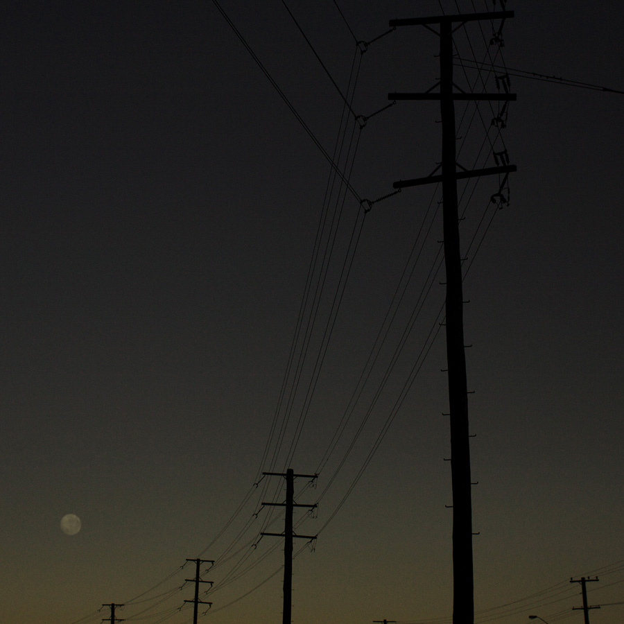 Simon-Portbury-Dawn-Wires-with-Poles.jpg